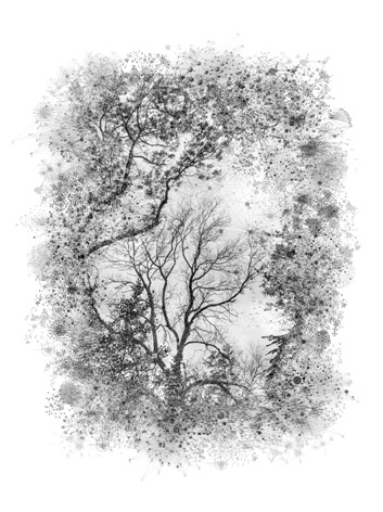 [Ali Alışır] Sanal Manzaralar  3